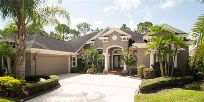 23402 Gracewood Circle, Land O Lakes, FL 34639 - MLS#: U8013546