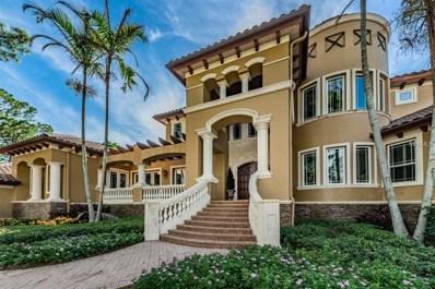 672 Soundview Drive, Palm Harbor, FL 34683 - MLS#: U8013735