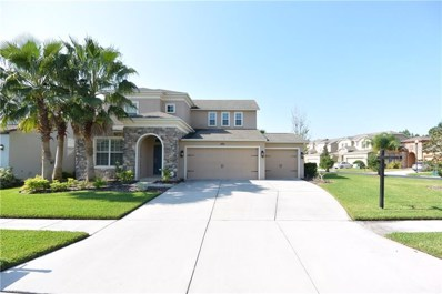 27392 Cayenne Lane, Wesley Chapel, FL 33544 - MLS#: U8013938