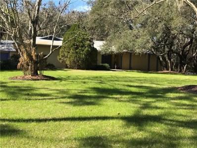 17510 Mallard Court, Lutz, FL 33559 - MLS#: U8014026