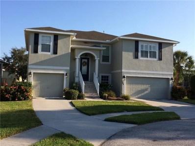 1003 Spoontail Court, Tarpon Springs, FL 34689 - MLS#: U8014513