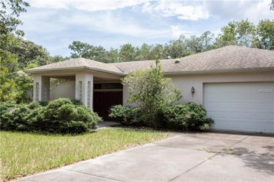 14330 Dabney Court, Spring Hill, FL 34610 - MLS#: U8015061