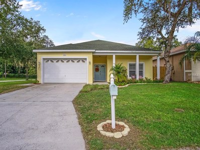 5801 Van Buren Street, New Port Richey, FL 34653 - MLS#: U8015882