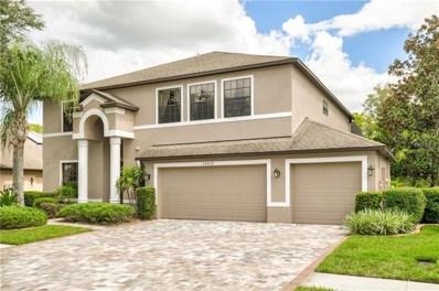 15412 Princewood Lane, Land O Lakes, FL 34638 - #: U8016428