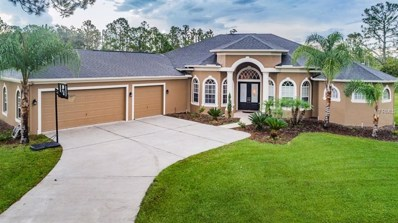 8118 Spring Forest Lane, Wesley Chapel, FL 33544 - MLS#: U8016498