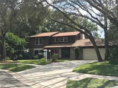 11717 Palmer Drive, Tampa, FL 33624 - MLS#: U8017000