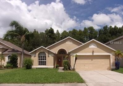 4253 Savage Station Circle, New Port Richey, FL 34653 - MLS#: U8017454