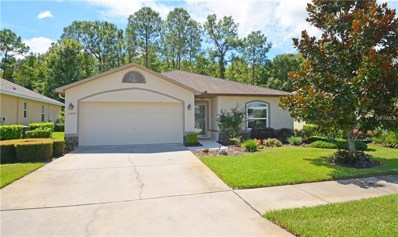11240 Kiskadee Circle, New Port Richey, FL 34654 - MLS#: U8017577