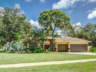 1412 Mallard Place, Palm Harbor, FL 34683 - MLS#: U8017821
