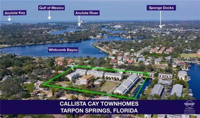 833 Callista Cay Loop UNIT 60, Tarpon Springs, FL 34689 - MLS#: U8018540