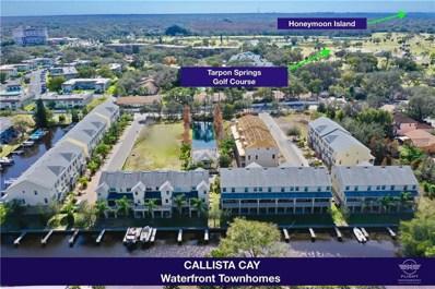 874 Callista Cay Loop UNIT 38, Tarpon Springs, FL 34689 - MLS#: U8018562