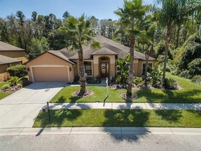 15350 Princewood Lane, Land O Lakes, FL 34638 - MLS#: U8018873