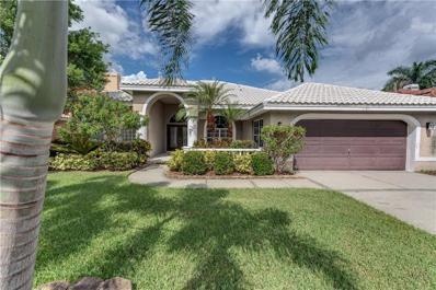 1131 Darlington Oak Drive NE, St Petersburg, FL 33703 - MLS#: U8019543