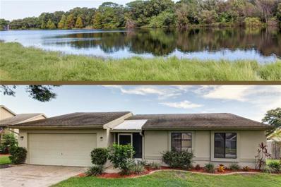 5811 Silver Moon Avenue, Tampa, FL 33625 - MLS#: U8019625