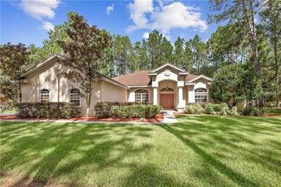 306 Pine Bluff Drive, Lutz, FL 33549 - MLS#: U8019913