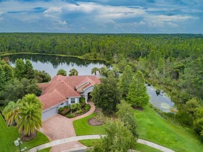 20102 Lace Cascade Road, Land O Lakes, FL 34637 - MLS#: U8020399
