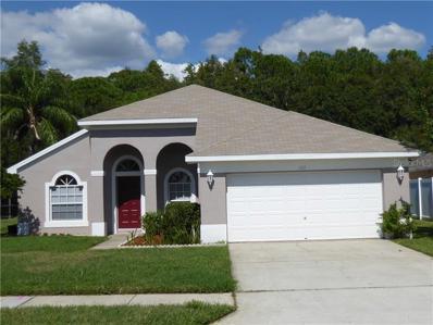 322 Fountainview Circle, Oldsmar, FL 34677 - MLS#: U8021088