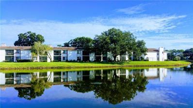146 Lakeview Way UNIT 146, Oldsmar, FL 34677 - MLS#: U8022232
