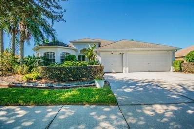 3107 High Meadow Way, Land O Lakes, FL 34639 - MLS#: U8022283