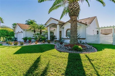 1805 Mapleleaf Boulevard, Oldsmar, FL 34677 - MLS#: U8022989