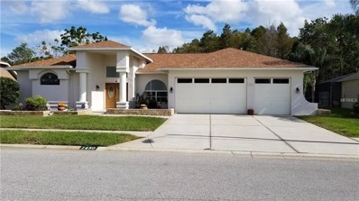 1430 Davenport Drive, New Port Richey, FL 34655 - MLS#: U8023143