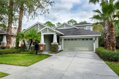 20040 Heritage Point Drive, Tampa, FL 33647 - MLS#: U8023182