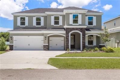 3420 Channelside Court, Safety Harbor, FL 34695 - MLS#: U8023360