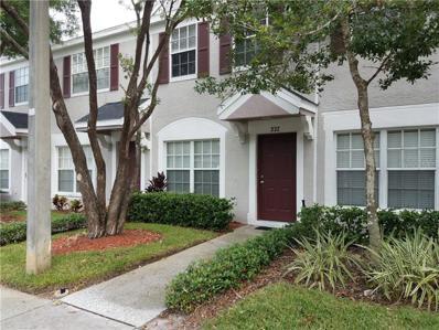 332 Countryside Key Boulevard, Oldsmar, FL 34677 - MLS#: U8024650