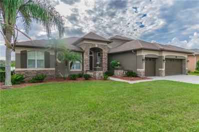 16047 Ivy Lake Drive, Odessa, FL 33556 - MLS#: U8024739