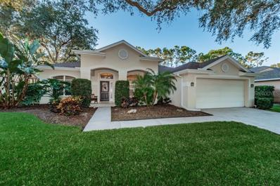 3669 Siena Lane, Palm Harbor, FL 34685 - MLS#: U8025159