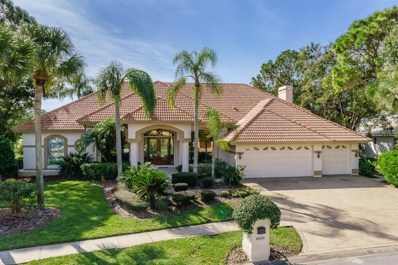 4904 Turtle Creek Trail, Oldsmar, FL 34677 - MLS#: U8025389