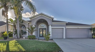 4103 Snipe Lane, Land O Lakes, FL 34639 - MLS#: U8026059
