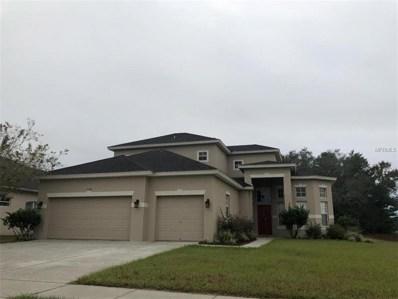 13396 Hunters Point Street, Spring Hill, FL 34609 - MLS#: U8026494