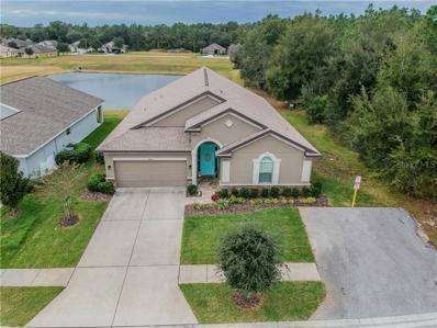 13633 Niti Drive, Hudson, FL 34669 - MLS#: U8027819