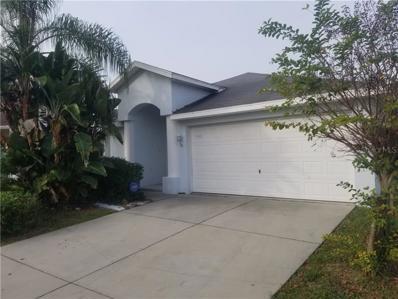 11536 Leda Lane, New Port Richey, FL 34654 - MLS#: U8029120