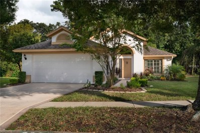 9222 Jiminez Drive, Hudson, FL 34669 - #: U8029203