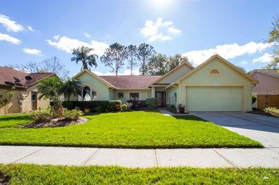 9719 Pleasant Run Way, Tampa, FL 33647 - #: U8029525