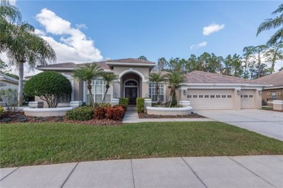 12023 Brewster Drive, Tampa, FL 33626 - #: U8031583