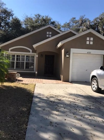 6721 Summer Haven Drive, Riverview, FL 33578 - #: U8033922