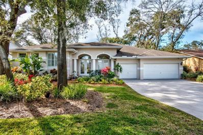 1868 Castle Woods Drive, Clearwater, FL 33759 - #: U8034026