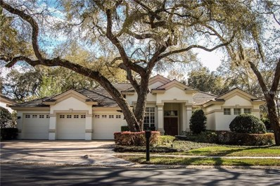 1520 Canopy Oaks Boulevard, Palm Harbor, FL 34683 - #: U8035912