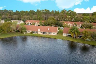3966 Mermoor Drive, Palm Harbor, FL 34685 - #: U8036057