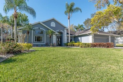 4538 Glenbrook Drive, Palm Harbor, FL 34683 - #: U8036218