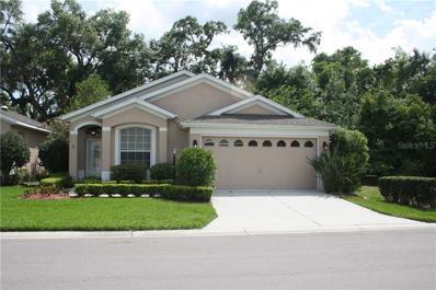 10016 Brookdale Drive, New Port Richey, FL 34655 - #: U8041088