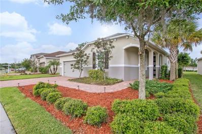 3219 Macintosh Road, Land O Lakes, FL 34639 - #: U8041415