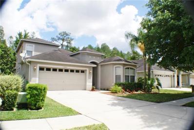 15841 Pond Rush Court, Land O Lakes, FL 34638 - #: U8042696