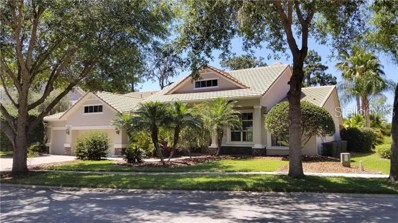 21207 Sky Vista Drive, Land O Lakes, FL 34637 - MLS#: U8043581