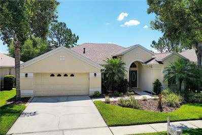 18133 Heron Walk Drive, Tampa, FL 33647 - MLS#: U8046535