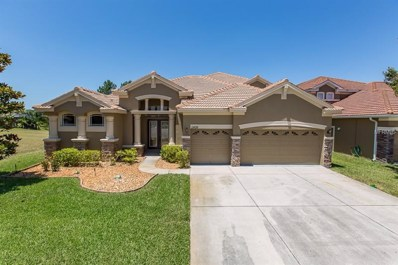 11426 Biddeford Place, New Port Richey, FL 34654 - MLS#: U8046991