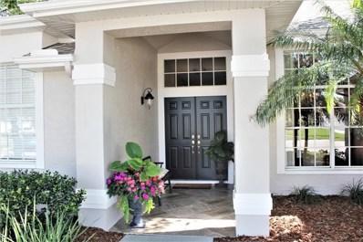 8239 Danubian Place, Trinity, FL 34655 - MLS#: U8047126